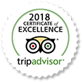 Crete-Taxi-Van-TripAdvisor-Reviews